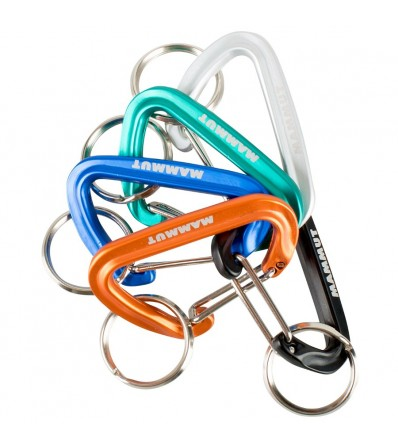 Carabiner Mammut Mini Biner Winter 2021