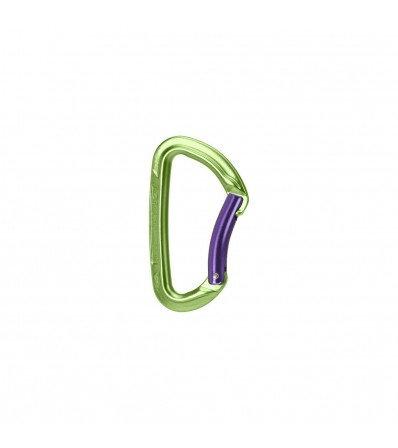 Carabiner Wild Country Session Bent Gate Winter 2021
