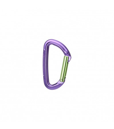 Carabiner Wild Country Session Straight Gate Winter 2021